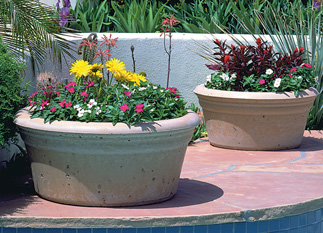 Low Bowl Outdoor Concrete Planters